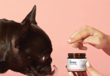 CBD Pet Balm For Dogs and Cats by Penelope's Bloom Review